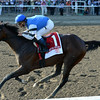 I Spent It wins the Saratoga Special 8/10/2014.<br /> Coglianese Photos/Chelsea Durand
