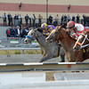 Coup de Grace wins the 2014 Bay Shore Stakes at Aqueduct.<br /> Coglianese Photos/Chelsea Durand