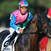 Itsmyluckyday wins the 2014 Woodward at Saratoga.<br /> Coglianese Photos/Eddie Davis