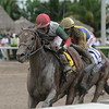 Little Alexis wins the 2014 Cash Run Stakes at Gulfstream Park.<br /> Coglianese Photos/Kenny Martin