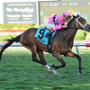 Room Service wins the Herecomesthebride Chimes Feb. 2, 2014.<br /> Cogliaense Photos/Leslie Martin