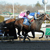 Farhaan wins the 2014 Stymie at Aqueduct. <br /> Coglianese Photos/Chelsea Durand