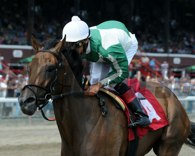Artemis Agrotera wins an Allowance/Optional Claiming Race at Saratoga on July 23, 2014.<br /> Coglianese Photos
