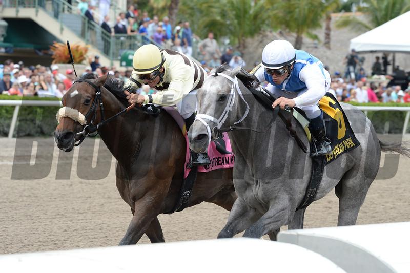 In Tune wins the 2014 Gulfstream Oaks.<br /> Coglianese Photos/Lauren King