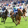 Mustajeeb, Pat Smullen up wins the Jersey Stakes, Royal Ascot, Ascot Race Course, England, 6/18/14 photo by Mathea Kelley