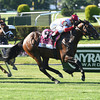 Real Solution wins the 2014 Knob Creek Manhattan Stakes (gr. IT) at Belmont Park.<br /> Coglianese Photos/David Alcosser