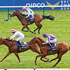 Night of Thunder wins the QIPCO Two Thousand Guineas