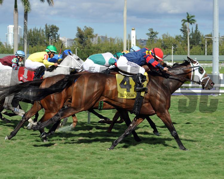 Coarsegold takes the Safari Queen Stakes at Gulfstream Park in Florida. <br /> Coglianese Photo