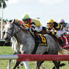 Inimitable Romanee wins the 2014 The Very One at Gulfstream Park.<br /> Coglianese Photos/Kenny Martin