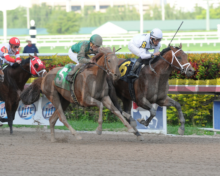 Commissioner - Allowance Win, January 3, 2014.<br /> Coglianese Photos/Lauren King