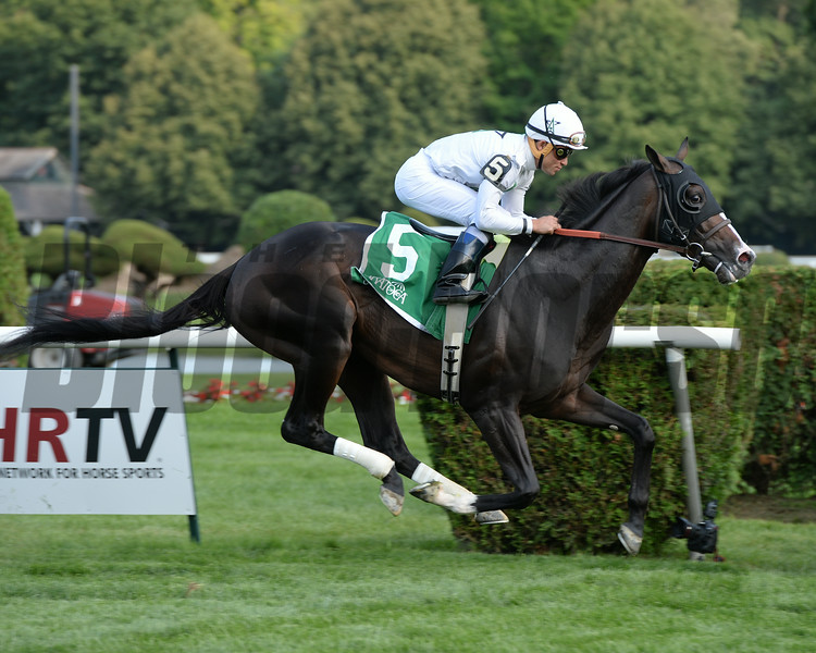 Tourist wins the 2014 Sir Cat Stakes at Saratoga.<br /> Coglianese Photos/Chelsea Durand