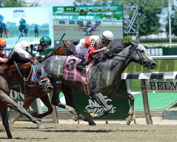 Norumbega wins the 2014 Brooklyn Invitational at Belmont Park.<br /> Coglianese Photos/Lauren King