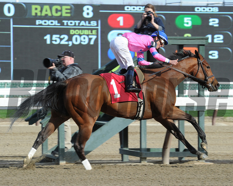 La Verdad wins the 2014 Distaff Handicap at Aqueduct.<br /> Coglianese Photos/Susie Raisher
