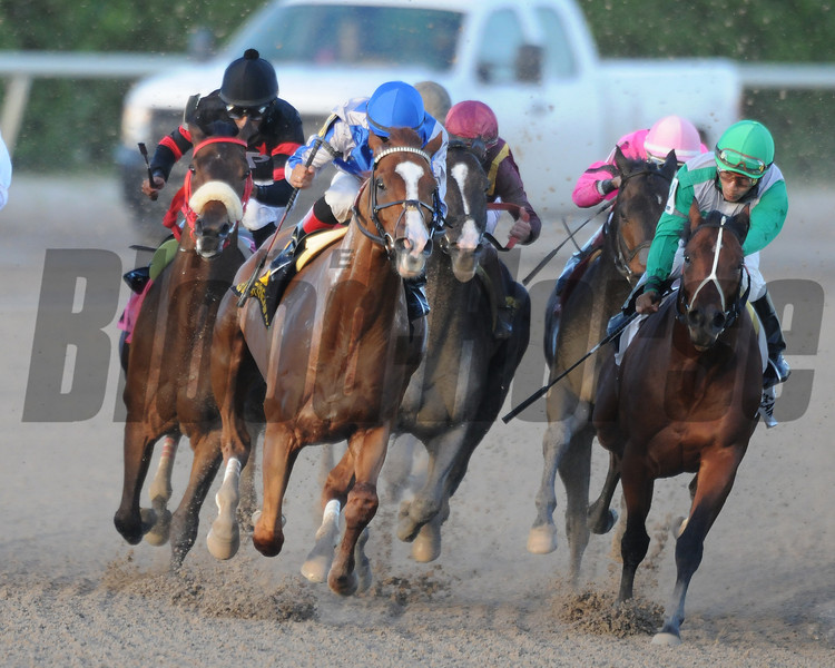 Lea wins the 2014 Hal's Hope.<br /> Coglianese Photos/Shannon Spies