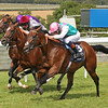 Racing from Goodwood 30/7/14. The QUIPCO Sussex Stakes.<br /> Kingman (right) wins from Toronado (centre) and Darwin (left).