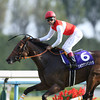 Shonan Pandora wins the Shuka Sho (gr. 1) in Japan 10/19/2014.<br /> Masakazu Takahashi Photo
