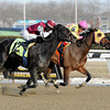 Lion D N A wins the 2014 Correction Stakes.<br /> Coglianese Photos