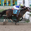 Intense Holiday wins the Risen Star Stakes at the Fair Grounds in New Orleans, LA Saturday February 22, 2014 Mike Smith was the winning jockey.<br /> Lou Hodges Photo / Hodges Photography