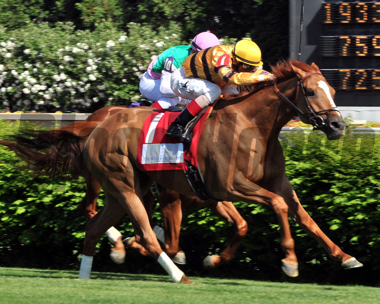 Wise Dan wins the Woodford Reserve (gr. I).