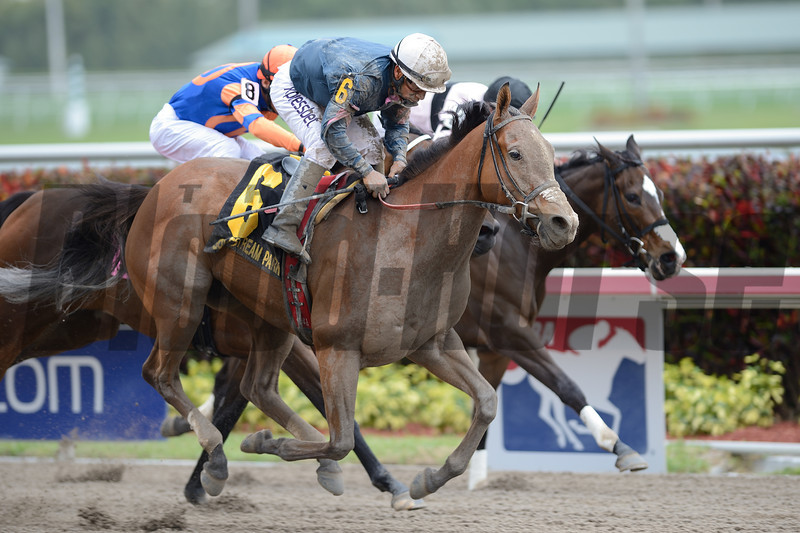 Devil's Cave did all her running from the start as the 1-2 favorite in the $150,000 Rampart Stakes (gr. III) at Gulfstream Park March 29, so stablemate Gamay Noir picked up the pieces in deep stretch to win at odds of 49-1.<br /> Coglianese Photo
