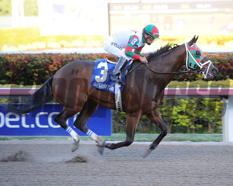 Ribo Bobo wins the 2014 Florida Sunshine Millions Sprint.<br /> Coglianese Photos/Lauren King