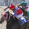 3/29/2014  -  Jockey John Jacinto (red cap) aboard Blading Wild Cat pulls away from Another Point and jockey Richard Eramia to win the Crescent City Oaks at Fair Grounds.  Hodges Photography / Lynn Roberts