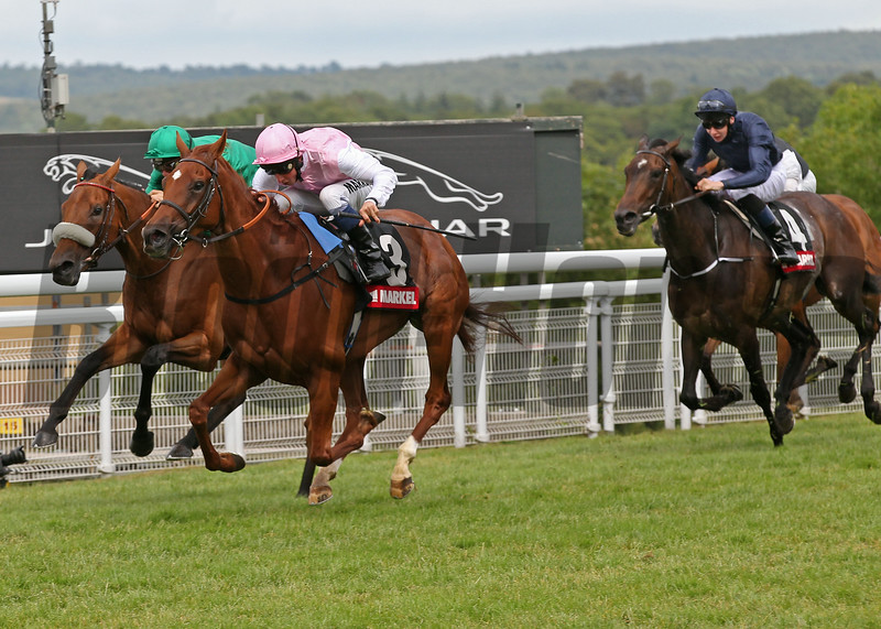 Racing from Goodwood  2/8/14. The Markel Insurance Nassau Stakes.<br /> Sultanina ridden by William Buick wins from Narniyn (left) with Venus De Milo (right) in third place.<br /> Trevor Jones Photo
