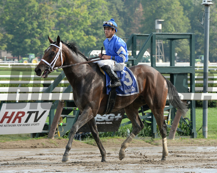 Antipathy wins the Shuvee Stakes July 27, 2014.<br /> Coglianese Photos