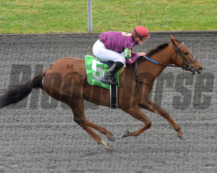 Keeneland Spring 2014; Lexington; KY; photo by Mathea Kelley, Share the Sugar, Julien Leparoux up, wins 50,000 maiden claiming, 4/4/14