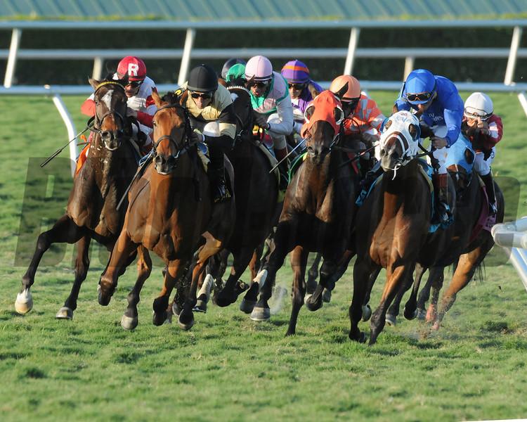 Twilight Eclipse wins the 2014 Mac Diarmida Stakes at Gulfstream Park. <br /> Coglianese Photos/Shannon Spies