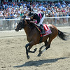 Kid Cruz wins the 2014 Dwyer Stakes at Belmont Park.<br /> Coglianese Photos/Chelsea Durand