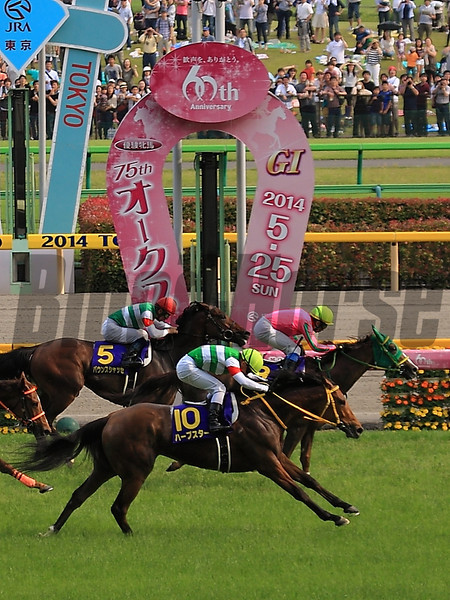 Nuovo Record wins the Japanese Oaks May 25.<br /> Naoji Inada Photo