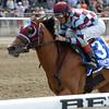 Bessie's Boy wins the 2014 Tremont Stakes at Belmont Stakes.<br /> Coglianese Photos/Joe Labozzetta