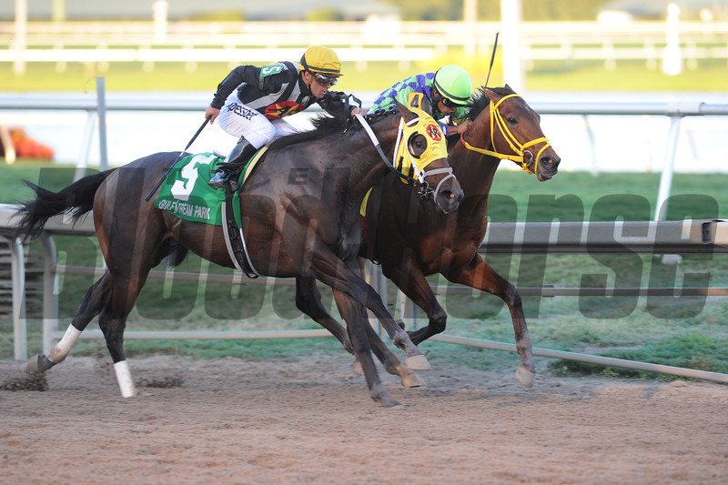 Wildcat Red wins the 2014 Fountain of Youth at Gulfstream Park.<br /> Coglianese Photos