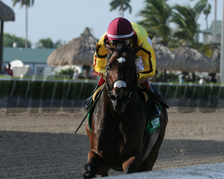 Atreides wins the Monarchos Stakes.<br /> Coglianese Photos/Kenny Martin