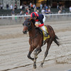 Tonalist wins the 2014 Peter Pan Stakes.<br /> Coglianese Photos/Chelsea Durand