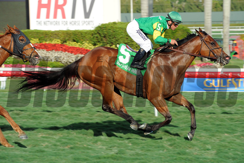 Believe In Charlie wins the Ladies Turf Sprint Stakes at Gulfstream Park.<br /> Coglianese Photos/Leslie Martin