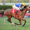 Candy Kitty wins the Ginger Brew Stakes.<br /> Coglianese Photos/Leslie Martin