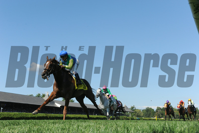 Dayatthespa wins the Yadda Stakes at Saratoga 8/24/2014.<br /> Coglianese Photos/Adam Mooshian