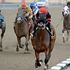Readthebyline wins at Aqueduct 11/25/2014.<br /> Coglianese Photos