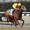 Teen Pauline wins the 2014 Top Flight at Aqueduct.<br /> Coglianese Photos