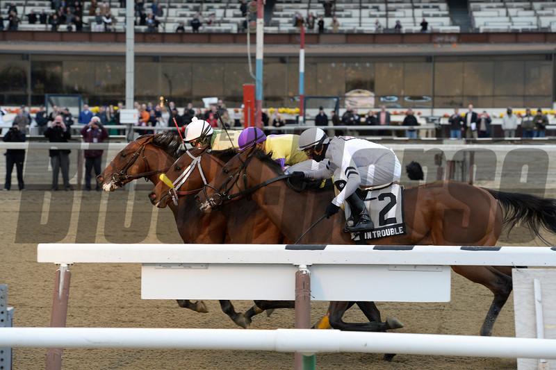 Samraat wins the 2014 Gotham Stakes at Aqueduct.<br /> Coglianese Photos/Joe Lobezzetta