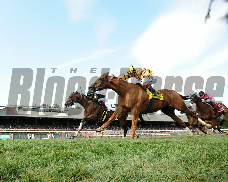 Two-time Horse of the Year Wise Dan, making his first start since returning from May 16 colic surgery, held off 29-1 shot Optimizer by a nose to win the $250,000 Grade II Bernard Baruch Handicap at Saratoga Race Course. <br /> Photo by: Adam Coglianese/NYRA