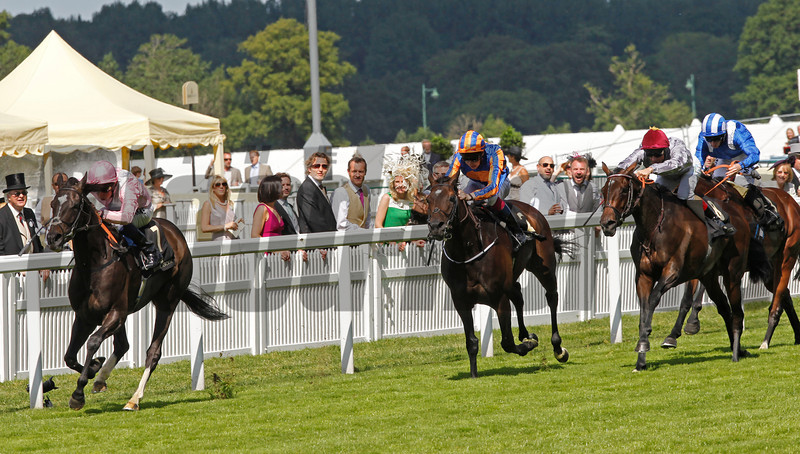 Royal Ascot 18/6/14. The Prince of Wales's Stakes<br /> The Fugue wins from Magician (royal blue, orange) with Treve (silver) in third place