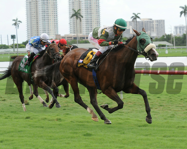 Madame Giry wins the 2014 Bob Umphrey Turf Sprint Stakes at Gulfstream Park. <br /> Coglianese Photos/Leslie Martin