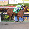 Wildcat Red wins the 2014 Hutcheson Stakes at Gulfstream Park. <br /> Coglianese Photos/Leslie Martin