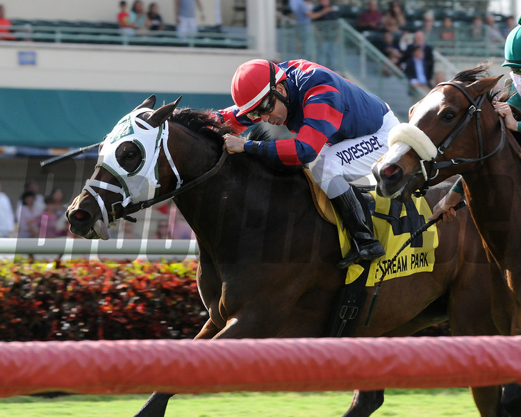 Coarsegold takes the Safari Queen Stakes at Gulfstream Park in Florida. <br /> Coglianese Photo