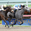 In Tune wins the 2014 Gulfstream Oaks.<br /> Coglianese Photos