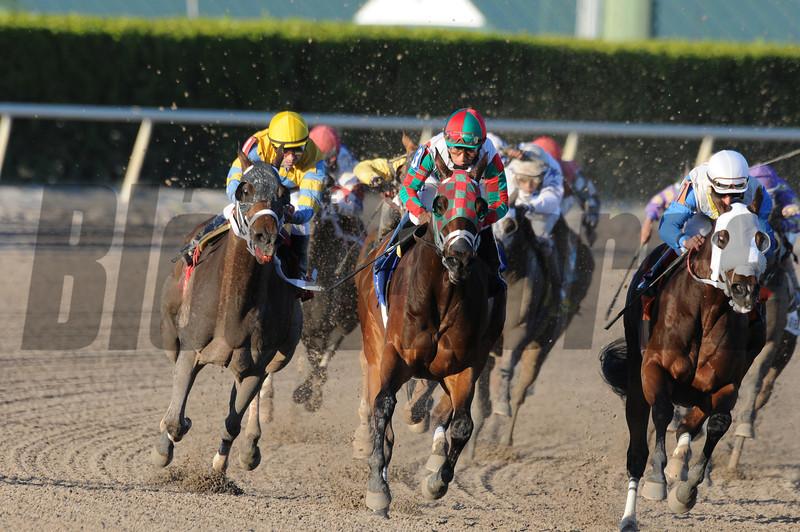 Ribo Bobo wins the 2014 Florida Sunshine Millions Sprint.<br /> Coglianese Photos