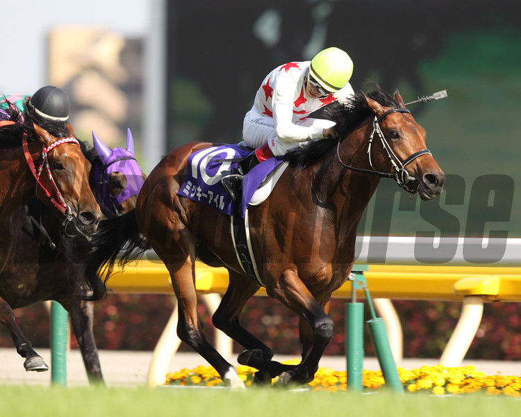 Mikki Isle wins the NHK Mile (G1) May 11, 2014.<br /> Masakazu Takahashi Photo